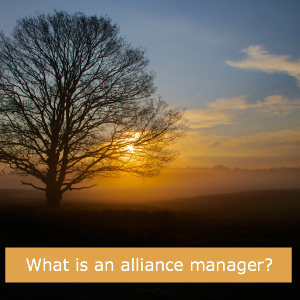 CBP28 - What is an Alliance Manager?
