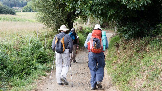 Pilgrims on the Camino